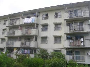 20070918d.jpg