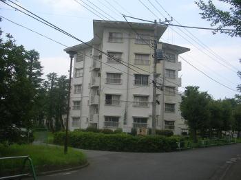 20070918e.jpg