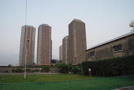 20090815j.jpg
