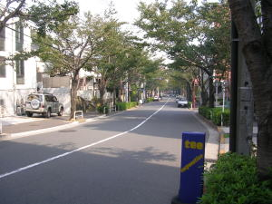 20051104h.jpg