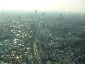 20060321d.jpg