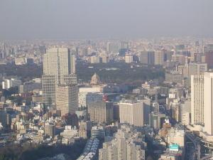 20060321m.jpg