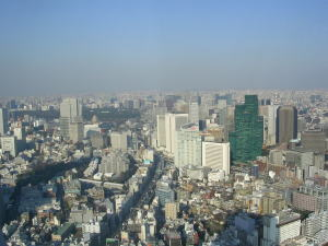 20060321p.jpg