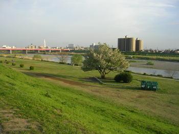 20060421x.jpg