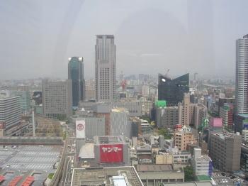 20060608c.jpg