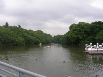 2006062610.jpg