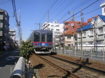 20070326a.jpg