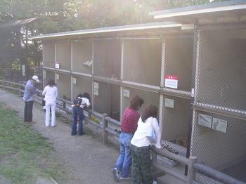 200705211.jpg