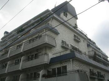 20070718a.jpg