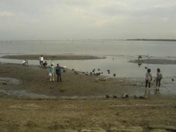 20070809n.jpg