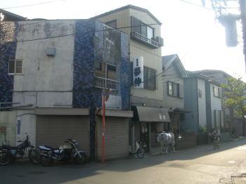 20071024a.jpg