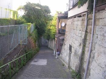 20080329h.jpg