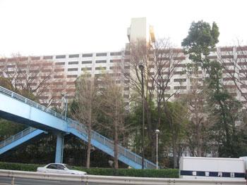 20080604f.jpg