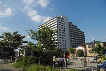 20081018e.jpg