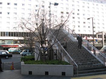 20090214a.jpg
