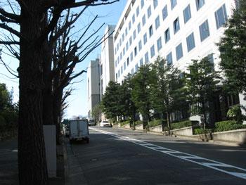 20090317f.jpg