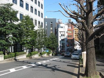 20090317i.jpg