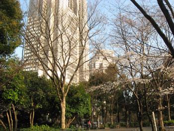 20090331d.jpg