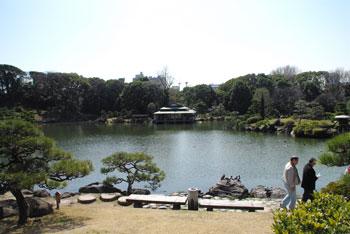 20090413c.jpg