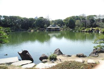 20090413i.jpg