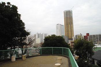20090416o.jpg