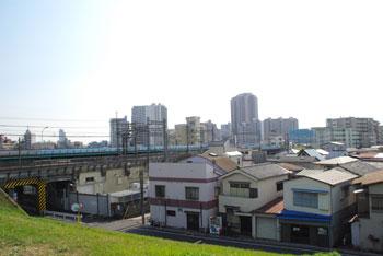 20090503t.jpg