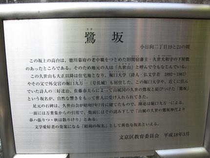 20090616c.jpg