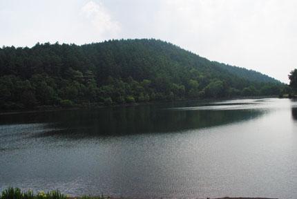 200906173.jpg