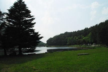 200906174.jpg
