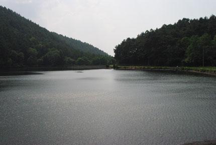 20090617r.jpg