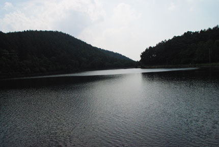 20090617u.jpg