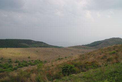 20090621k.jpg