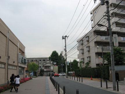 20090714y.jpg