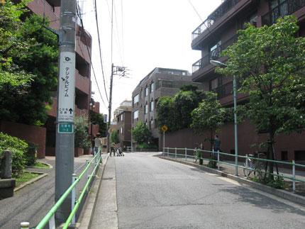 20090725b.jpg
