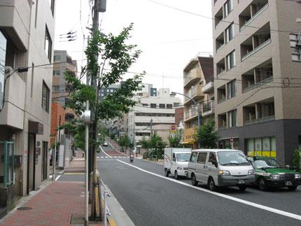 20090805c.jpg