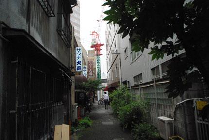 20090808d.jpg